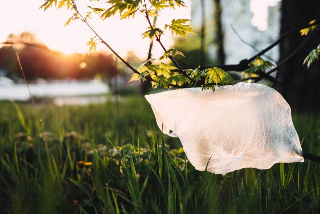 Sacola plástica é banida de região paradisíaca