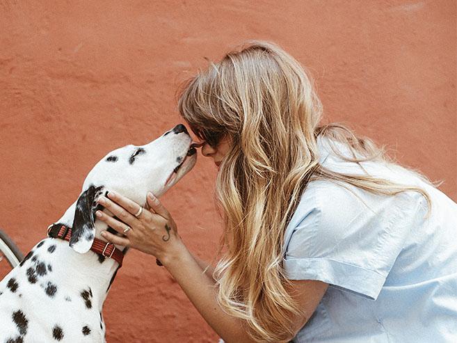 Animais de estimação podem agora entrar nos hospitais com seus tutores